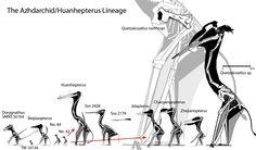 The Azhdarchid/Huanhepterus Lineage | Azhdarchidae [Pterosaurs]