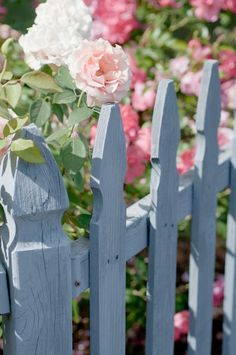 Cottage Blue Fence - love this against the gorgeous pink blooms greenery! Blue Fence, Country Blue, Garden Fencing, White Gardens, Rose Cottage, Dream Garden, Garden Inspiration, Beautiful Gardens, Outdoor Gardens