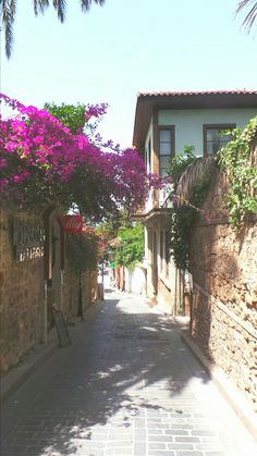 Beautiful narrow streets of old town Antalya, Turkey Beautiful Streets, Turkey Travel, Old Town, Places To See, Istanbul, Landscape, World, Photography, Instagram