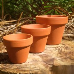 Terracotta Pots 1~50 pcs - Mini, S, M, L & XL Planters, Plant Pots - Crafts | Garden & Patio, Plant Care, Soil & Accessories, Baskets, Pots & Window Boxes | eBay!