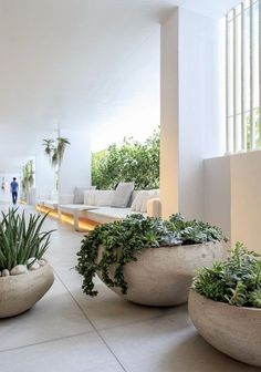 Balcony Garden, Indoor Garden, Garden Pots, Indoor Plants, Garden Bed, Herb Garden, Outdoor Pots, Outdoor Gardens, Outdoor Spaces