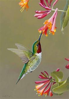 Beautiful hummingbird - #painting #oil #oilpaintin #art