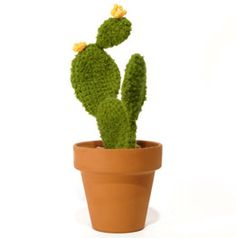 elementos argentinos - crochet cactus