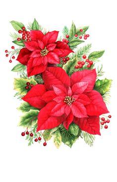 Poinsettias clip art big 700x1087 Christmas                                                                                                                                                                                 More