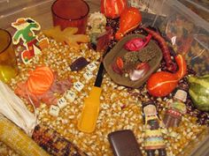 "fall/thanksgiving sensory bin or bottle: uncooked popcorn kernels, pumpkin seeds, acorns, uncooked beans, real or plastic leaves, small gourds, all plastic letters of the alphabet or just letters spellings out ""fall"" or ""thanks"", plastic scoop & plastic tong for kids to use to pick stuff up with"