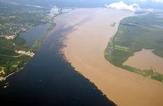 Junção do Rio Negro e Solimões - Amazônia