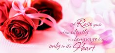 Rose day wallpapers quotes wishes and romantic love messages .Rose day facebook covers and whatsapp status .