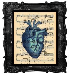 Music of the human heart