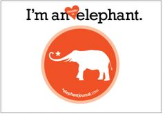 elephant declines generous investment offers, remains independent media, takes loan, has 2.5 months. Reader Link model. ~ Waylon Lewis, Mar 25, 2010