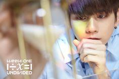 "Wanna One l ""1÷x=1 (UNDIVIDED)"""
