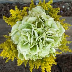 Yellow-green, Hydrangea Antique with Green Solidago are as unique as your intended recipient. And just as Precious. Growing Flowers, Planting Flowers, Green Flowers, Green Hydrangea, Flower Subscription, Wedding Ideas, Wedding Details, Wedding Inspiration, Flower Bouquet Wedding