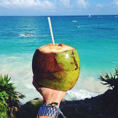 Fresh coconut with a view in Tulum.  #Padgram