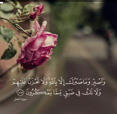 Surah An-Nahl (The Bee) ~ And be patient, (O Muhammad), and your patience is not but through Allah. And do not grieve over them and do not be in distress over what they conspire. Quran Verses, Quran Quotes, Wisdom Quotes, Qoutes, Allah Islam, Islam Quran, Muslim Quotes, Islamic Quotes, Quran Pak