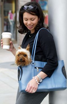 on the go in style - great dog purses / carriers