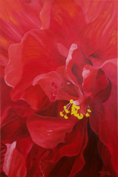 "Oil painting titled ""Hibiscus - Red on Red"", done on a 24"" x 36' x 1.5"" canvas. Not available."