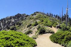 Bighorn Ridge, Ontario Peak Trail