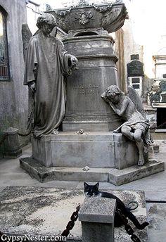 La Recoleta Cemetery in Buenos Aires, Argentina http://www.gypsynester.com/buenos-aires-cemetery.htm