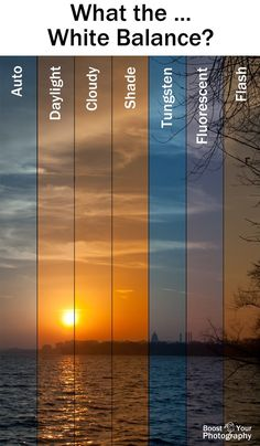 What the ... White Balance? | Boost Your Photography #whitebalance #photography #tips