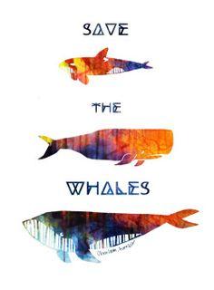 My art watercolor ocean whale dolphin killer whale artists on tumblr seaworld humpback whale vector art orca sperm whale blackfish anti captivity the cove sea shepherd save the whales emptythetanks anti whaling seasheperd onegreenplanet