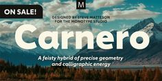 Carnero was designed by Steve Matteson and published by Monotype. Carnero contains 12 styles and family package options. Typography Fonts, Lettering, Capital R, Custom Fonts, New Fonts, Lowercase A, Retail Design, Web Design, Desktop