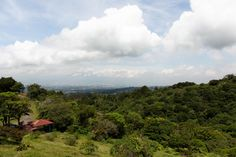 Hiking in Heredia: Bosque Caricias los Leones Costa Rica, Tropical, River, Mountains, Blog, Outdoor, Lion, Woods, Outdoors