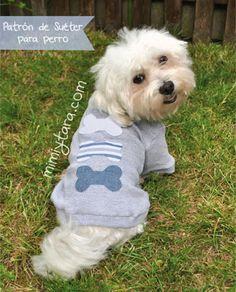 Mimi y Tara | Patrones de ropa para perros: Patrones de suéter para perro