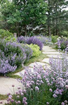 Rock Garden Design, Rock Garden Plants, Garden Paths, Garden Beds, Fence Garden, Fence Design, Garden Villa, Diy Fence, Garden Guide