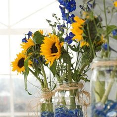 I think sunflowers are a good call.  What are the tall blue ones?