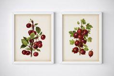Set of 2 kitchen prints Cherry print by RestoredBotanicalArt