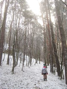 Girl in the snowy forest Snowy Forest, Girl Pictures, Photo Editing, Stock Photos, Fine Art, Photography, Outdoor, Inspiration, Image