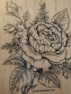 Retired Stampin Up Romantic Rose ~ Floral Sketch Bloom ~ 1998