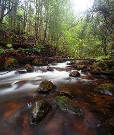 Long exposure photograph of a stream in Marysville, Victoria by photographer Alex Wise. Marysville Victoria, Love Photography, Pathways, Perfect Place, Waterfall, Places, Nature, Travel, Outdoor