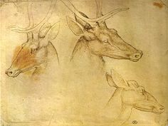 Pisanello, three stag heads. Codex Vallardi 2490, Louvre, Paris.