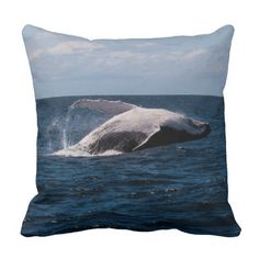 Throw pillow which features a humpback whale in a breaching display in the waters off Surfers Paradise, Australia. Each year thousands of Humpbacks migrate North from Antarctica along the Australian East coast to breeding grounds off QLD.