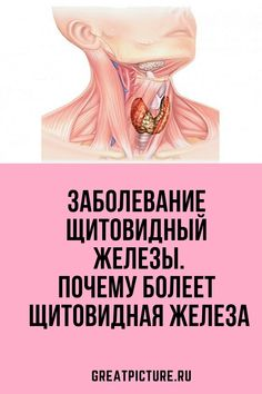 Ibs, Thyroid, Herbal Remedies, How To Lose Weight Fast, Diabetes, Healthy Life, Anatomy, Herbalism, Health Fitness