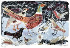 Mark Hearld, Pheasant, Lithograph, birds, print, printmaking, design, colour, nature, drawing, illustration