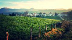 IMG_20140505_042843 (1) Vineyard, Outdoor, Camino De Santiago, Outdoors, Vine Yard, Vineyard Vines, Outdoor Games, The Great Outdoors