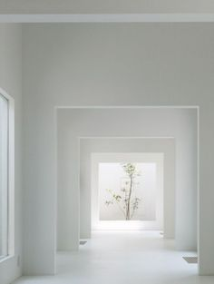 Minimal Zen Decor  how to incorporate into my dream home?