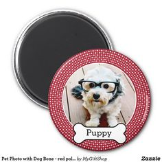 Pet Photo with Dog Bone - red polka dots Magnet Follow the link to see this product on Zazzle! @zazzle #dog #dogs #dogstuff #dogpin #pet #pets #animals #animal #fun #buy #shop #shopping #sale #dogowner #dogmom #dogdad #dogperson #dogpeople #kitchen #homedecor #magnets #magnet #refridgerator #funny #lol #awesome #laughing #laugh