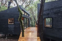 The Forest House In Northern California. Having a small house can be very pleasant. If the house is built with a modern and special design. Like examples of this minimalist house. Model Architecture, Texture Architecture, Architecture Design Concept, Classical Architecture, Ancient Architecture, Sustainable Architecture, Contemporary Architecture, Landscape Architecture, One Room Cabins