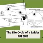 FREE!  Are you covering a unit on Charlotte's Web, or something else that could easily incorporate spiders? Maybe you want something fun for Halloween tha...