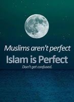 Non perfect muslim doesn`t imply that islam is non perfect too. 'Don`t Get CONFUSED'. Those idiot terrorists that call themselves muslims are idiots but that doesn't mean Islam isn't a good religion and that doesn't mean all muslims are bad people Islamic Qoutes, Islamic Inspirational Quotes, Muslim Quotes, Religious Quotes, Motivational Quotes, Islam Religion, Islam Muslim, Islam Quran, Muslim Faith