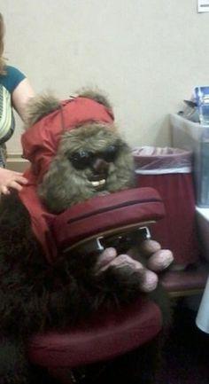 Ewoks knead massage, too!