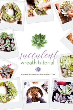 You are just 5 Steps away from having a Living Succulent Wreath to hang in your house or to gift to a friend. Succulent Wreath, Wreath Tutorial, Succulents, Wreaths, In This Moment, Modern, Projects, Gifts, Design