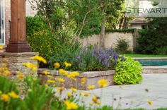 Pick native plants that will not only flourish in your garden, but create a homey, comfortable look in any flower bed or planter. #StewartLandDesigns