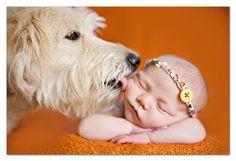 Adorable newborn and dog