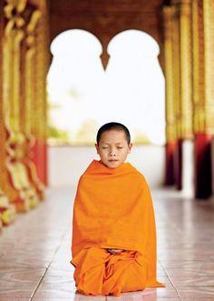 Meditate. Meditate. Meditate.