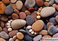 creative stone walkways - Google Search