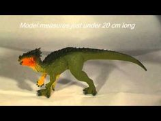 Everything Dinosaur Review of Safari Ltd® Wild Safari® Dracorex