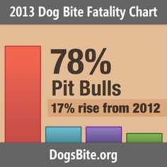 California led lethal dog attacks in 2013 with 5 deaths. 100% were attributed to pit bulls and 60% resulted in criminal charges. Texas follo...